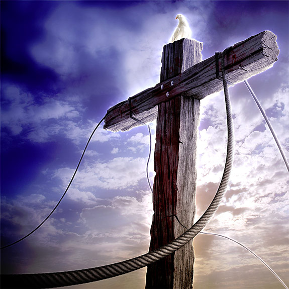 the cross of christ Interview with Chris Scholten