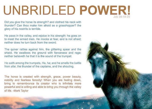 UNBRIDLED POWER WALLPAPER