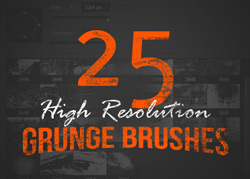 25 High Resolution Brushes