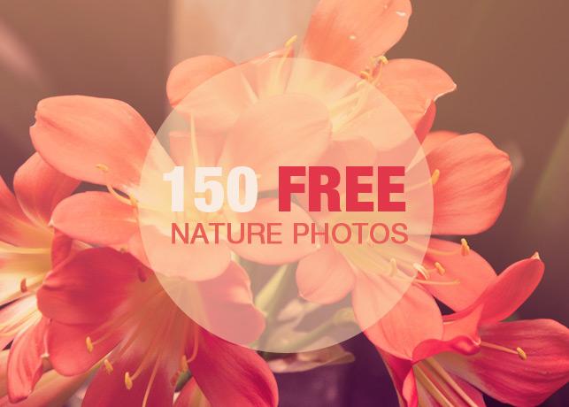 150 Free Nature Photos Bundle